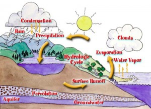 This is a cycle of how water evaporates