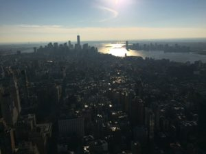 Another picture of the view from the Empire State ,because why not?